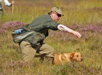 inverness_gun_dog_gallery_1