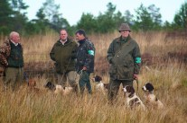 inverness_gun_dog_gallery_14