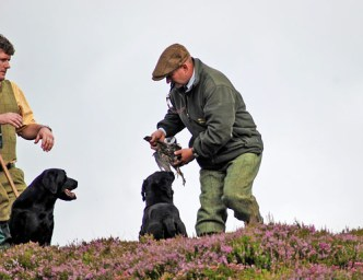 inverness_gun_dog_gallery_18