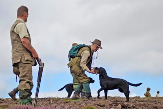 inverness_gun_dog_gallery_19